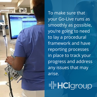 Go-Live Support Procedures and Reporting