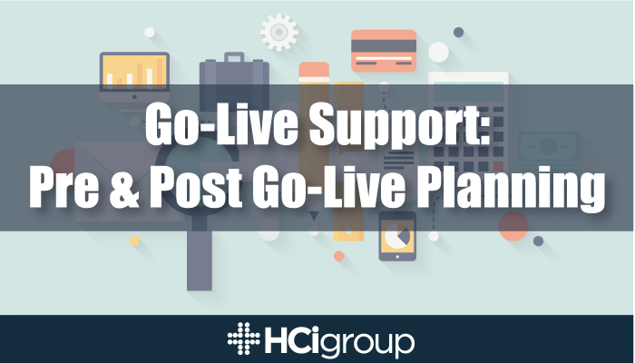 Go-Live Support: Pre and Post Go-Live Planning