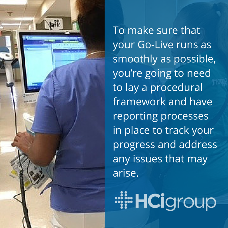 Go-Live Support: Procedures & Reporting
